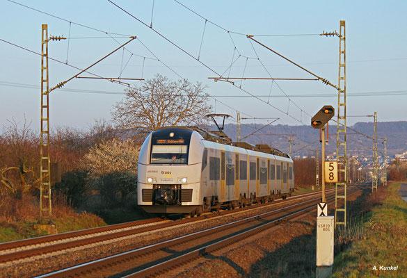 460 006 der transregio fährt am 17. März 2016 als MRB 25394 nach Köln Messe/Deutz bei Bingen-Gaulsheim der Abendsonne entgegen.
