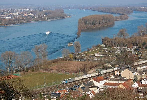 Einen Ekol-Zug hat diese Railpool-186 am Haken. Auch dieser Zug ist am 17. März 2016 im Rheintal bei Bingen unterwegs.