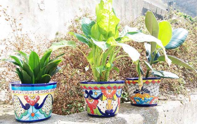 Mexikanische Blumentöpfe aus Keramik