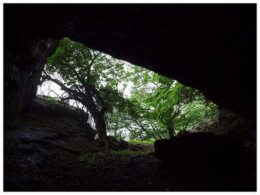 Grotta dei Giganti: dall'interno