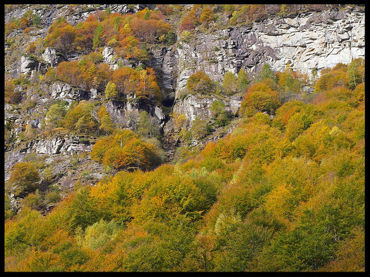 Caverna Vegornèss: l'imbocco al centro visto dal fondovalle