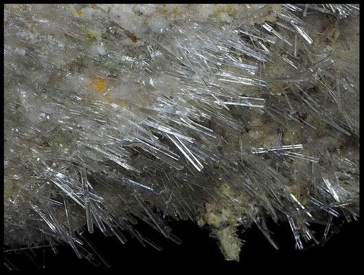 La Canaria: cristalli di selenite