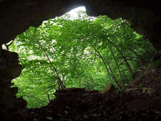 Grotta Catini