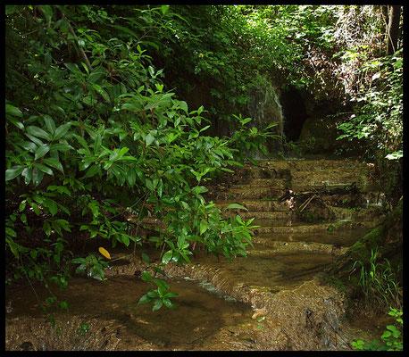 Grotta Pre Murin: vaschette di calcite nel ruscello