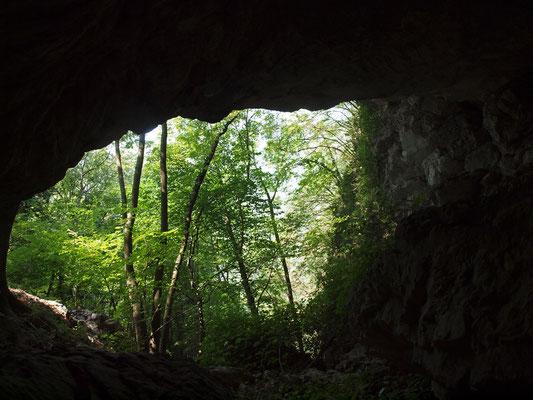 Grotta del Riccio