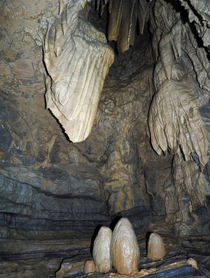 Grotta Antigua (Monte San Giorgio)