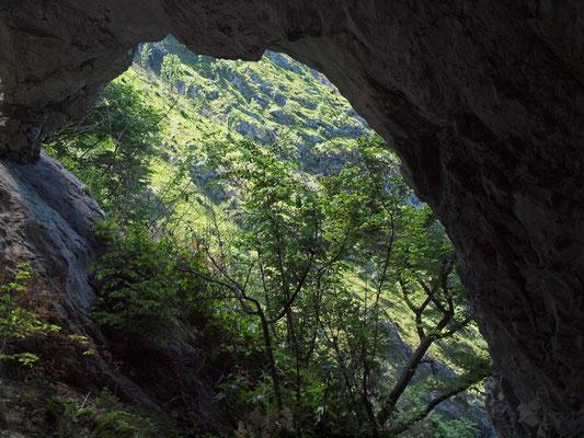 Grotta delle Api