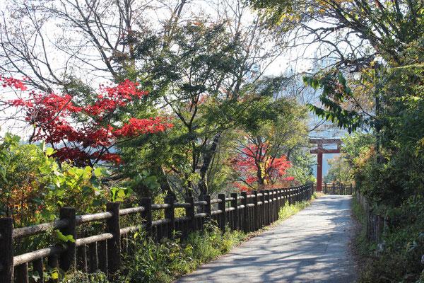 Der Weg zum Shintō-Schrein.