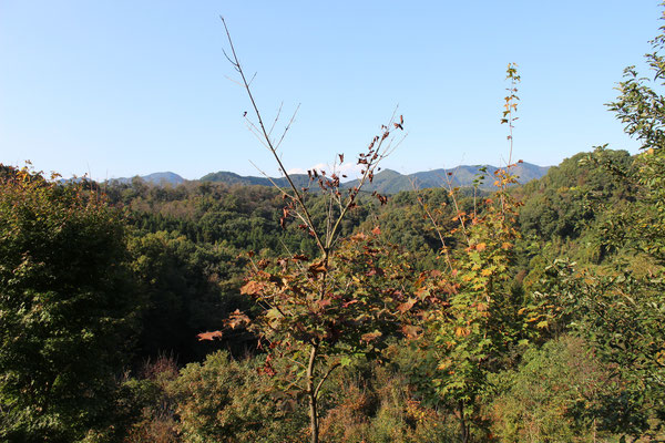 Auf dem Berg Hodosan