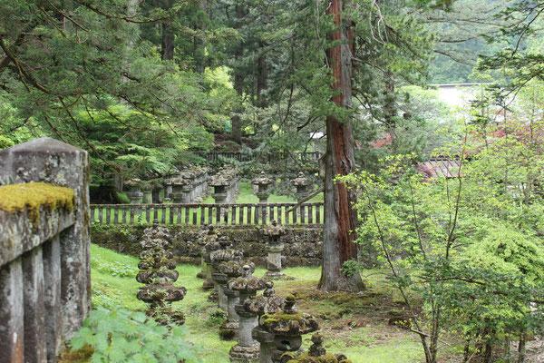 Ein magischer Ort (Taiyuinbyo-Schrein)