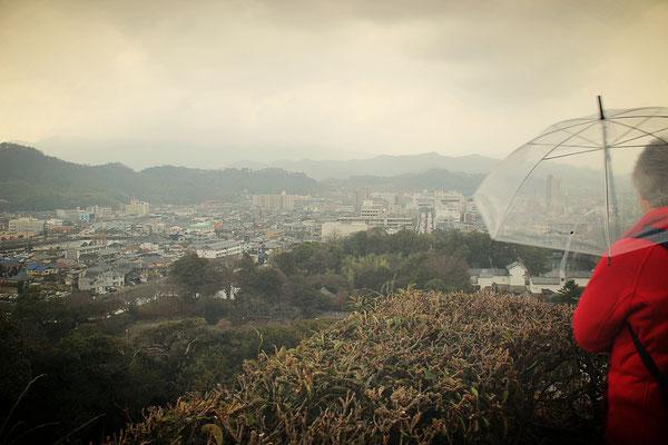 Blick auf de Stadt Hikone