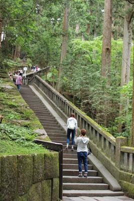 Hunderte von Steinstufen geleiten durch einen Sicheltannenwald aufwärts zum Grab Ieyasus im inneren Bezirk (Okunoin) des Schreins.