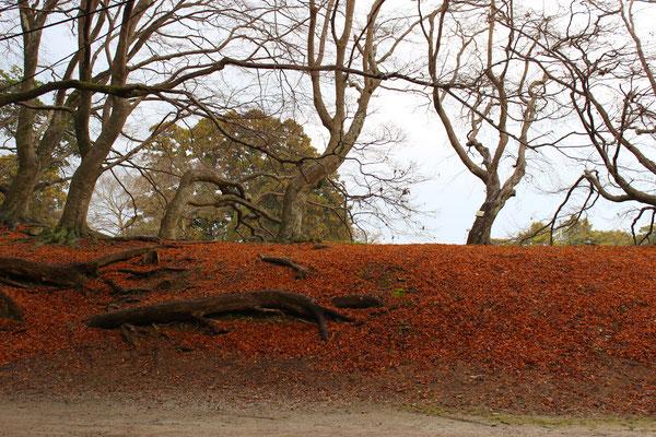 Auf dem Weg von der Burg zum Genkyuen-Garten.