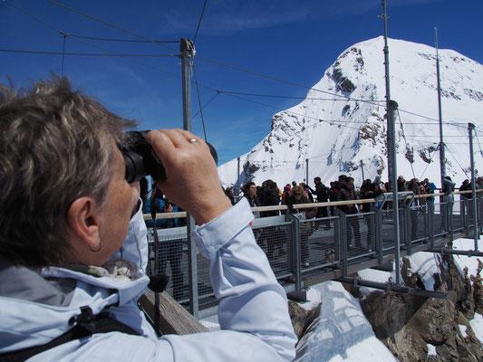 Jungfraujoch - Hintergrund Mönch