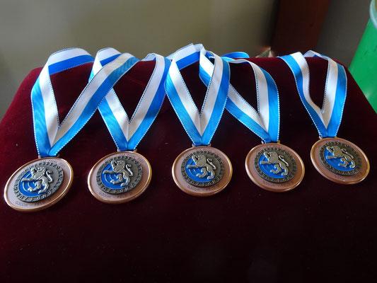 Bronze für Kyburg Kat. D!