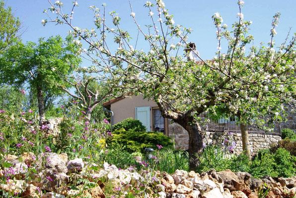 Jardin au printemps.