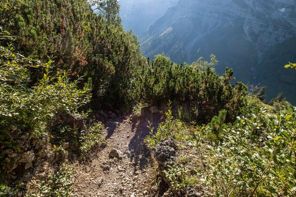 Danach gehts runter zu Engalm (1227m)