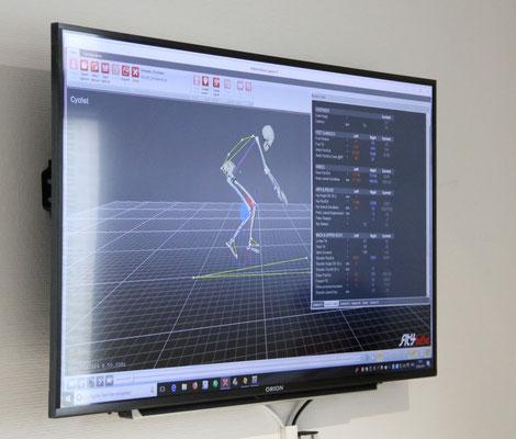 Durch ein Hochleistungs-Motion-Capture-System werden alle Bewegungen und entstehenden Winkel auf dem Fahrrad in Echtzeit berechnet und dargestellt.