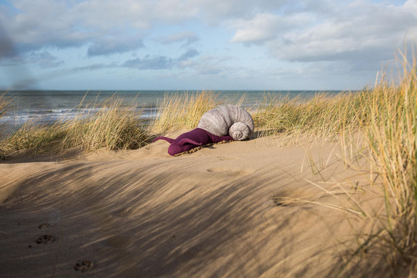 Das Meer sehen, Feb. 2016, Belgium
