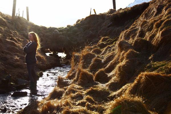 Die Suche 5, self portrait, Mar. 2014, Iceland