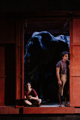 Wie versteckt man einen Elefanten? (Khush (HR) als Puppenspieler) © Ruiz Cruz