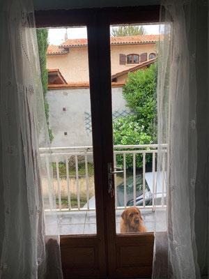 rénovation porte fenêtre
