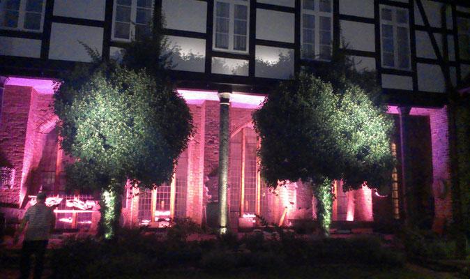 Dekorations- und Akzentbeleuchtung - Kulturhistorisches Museum Stralsund