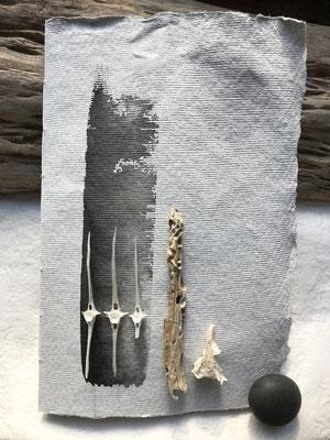 handgeschöpftes & weißes Papier, Tusche, Fischskelttteile, kleines von Schiffsbohrmuscheln gezeichnetes Treibhölzchen