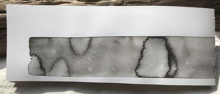weißes Papier, Tusche, Treibholz, Köpfchen aus der Lachmöwenfamilie