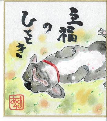 ペットイラスト色紙13cm✖12cm ¥1,500