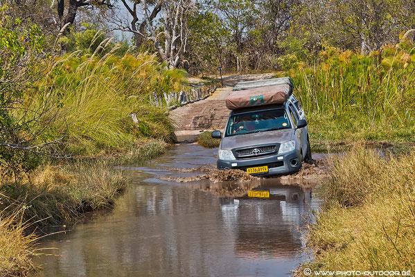 Moremi-NP/Botswana