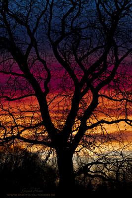 """""""Immer dabei"""", auch bei diesem spektakulärem Sonnenuntergang in meiner Heimat."""