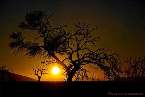 Sonnenaufgang Sossusvlei