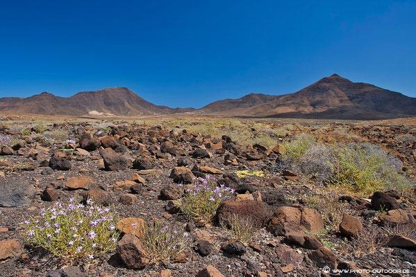 Parque Natural de Jandia, Fuerteventura