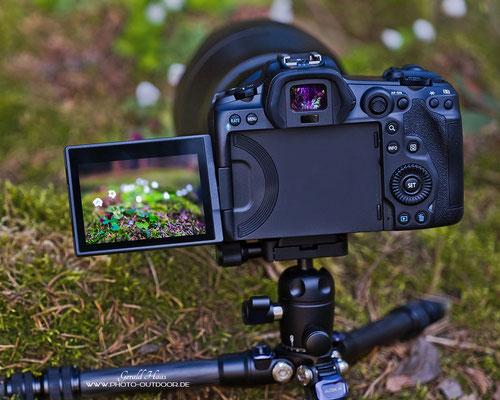 Das dreh- und schwenkbare Klappdisplay der EOS R5 wird vor allem auch die Makrofotografen erfreuen.