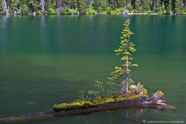 Ob das was wird??? Unsichere Zukunftsaussichten im Rawson Lake.