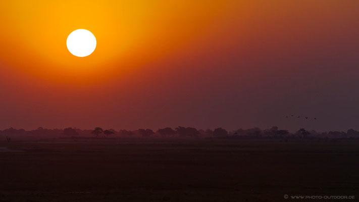 Ausblick vom Ihaha Camp im Chobe-NP