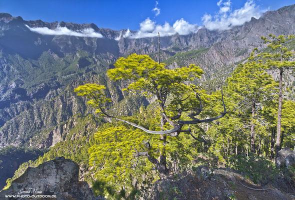 Ausblick in die Cumbrecita. Die Ausmaße der Caldera sind kaum zu erahnen