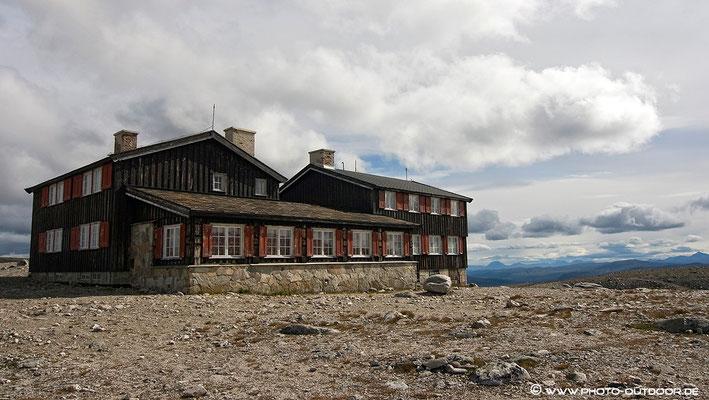 Snoheim/Dovrefjell-NP