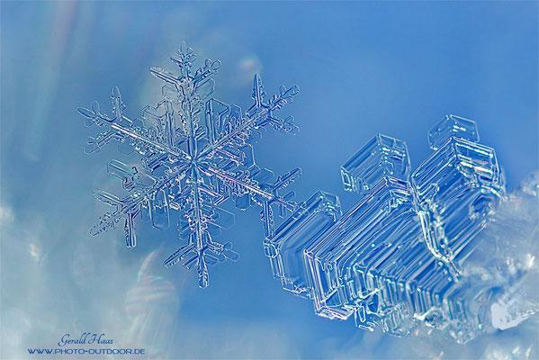 Extremmakro eines winzigen Eiskristalls (ca. 2mm Größe)