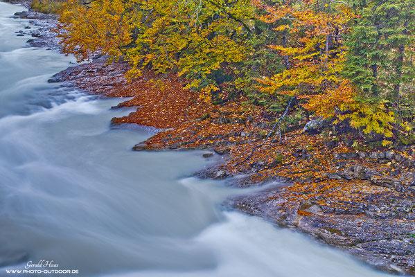 Herbstfarben an einem Wildbach im Karwendel.