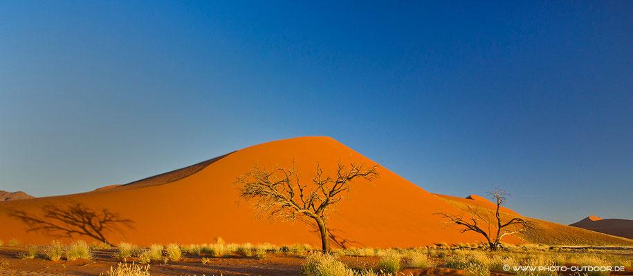 Klassiker - die Düne 45 in der Namib-Wüste