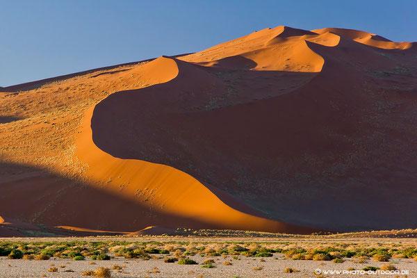 Magische Linien in der Namibwüste
