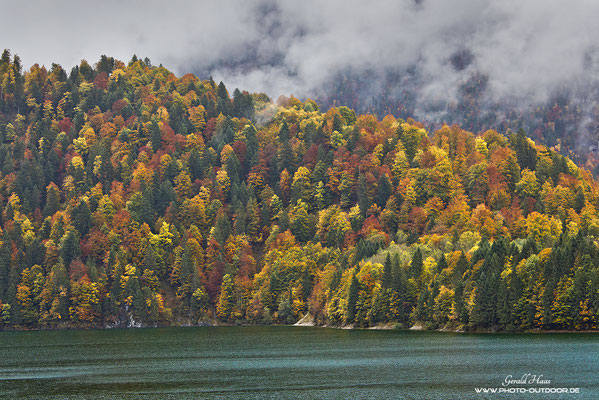 Zum richtigen Zeitpunkt zeigt der Herbstwald eine fast unendliche Vielfalt an Farbabstufungen. Einfach nur schön zum Anschauen.