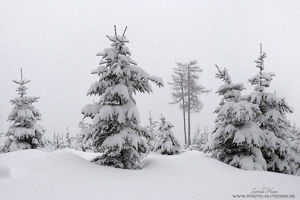 Schnee ohne Ende, eine Tag ununterbrochen...