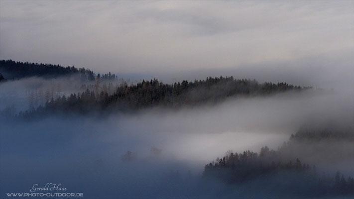 ... nur einzelne kleine Waldinseln ragen aus dem Nebel hervor.