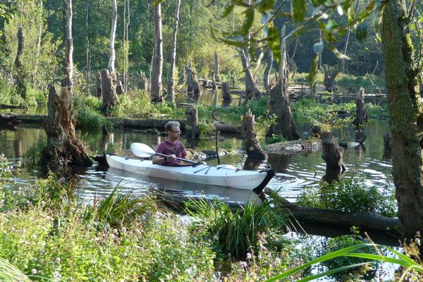 Oru Kayak in den Schwalmauen bei Brüggen