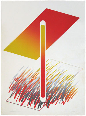 RELATIVITY 1-A 1971 Lithograph,Metal block 76x56cm ED.30