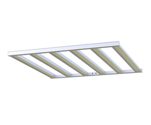 Led Horizon Swiss Spider Led Pflanzenbeleuchtung cannabis