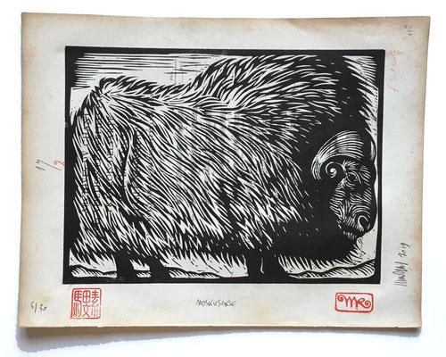 mattroussel_gravure_sur_bois_Moskusoske 25x30 160€